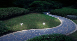 Solar Lights Landscaping Ideas