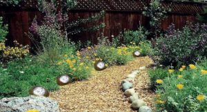 5 Reasons to Use Solar Rock Lights in Your Home Garden